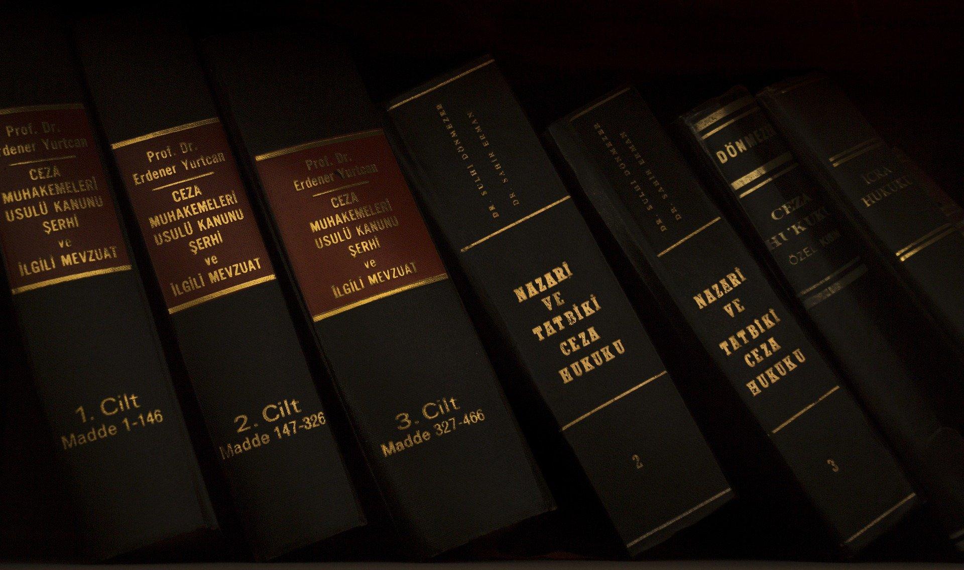 Justice Law Case Hearing Old Skin Book Bookshelf